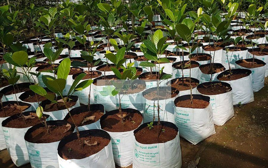 grow-bags